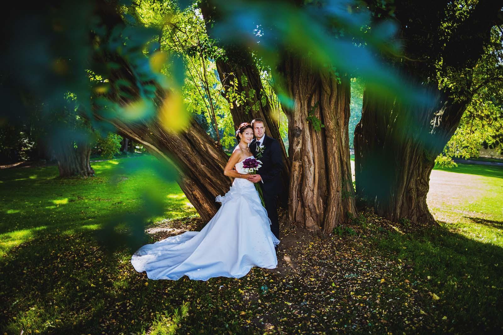 Fotoshooting unter einem Baum mit Brautpaar Hochzeitsfotograf Copyright by Hochzeitsfotograf www.berliner-hochzeitsfotografie.de